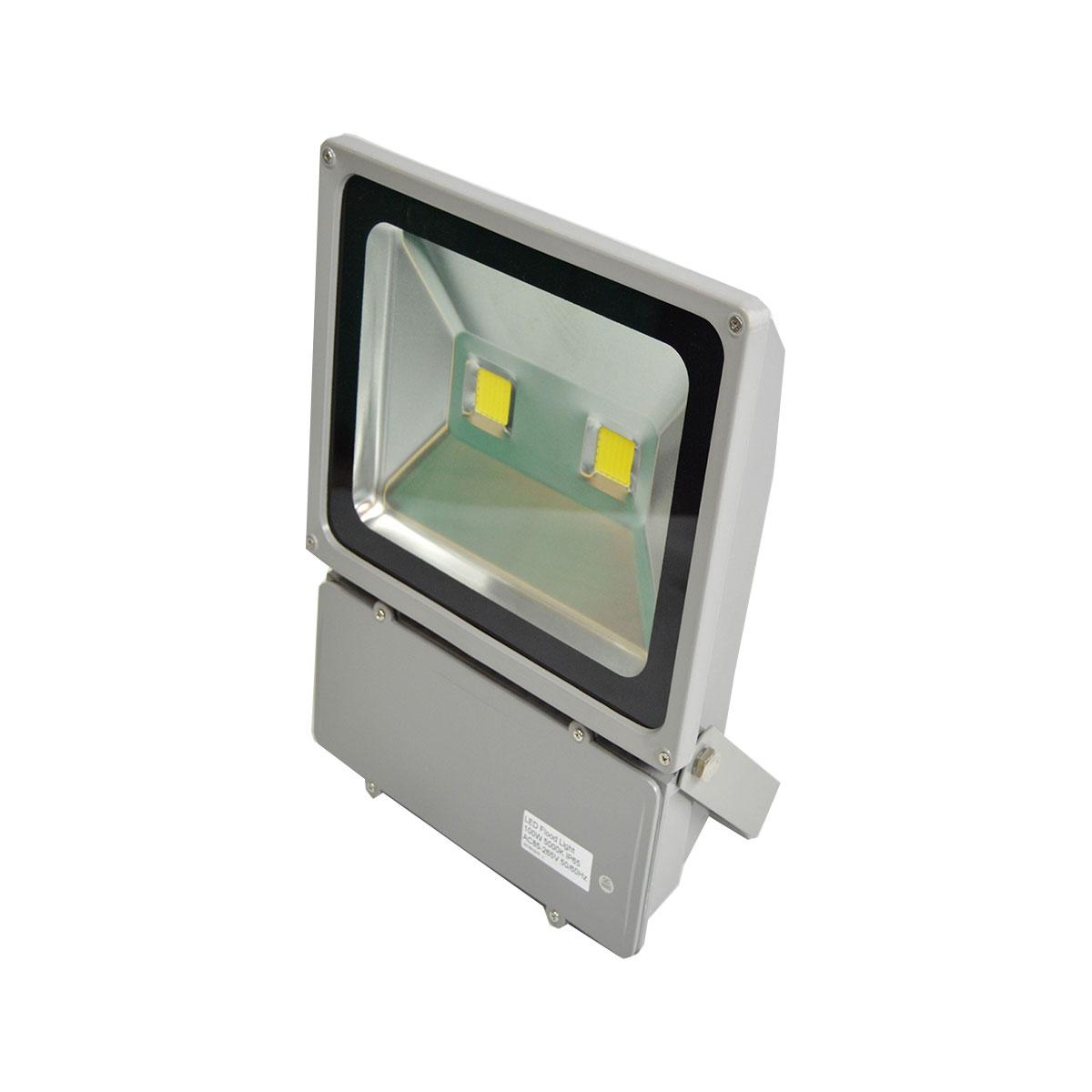 led floodlight 100 watt evergrid solar. Black Bedroom Furniture Sets. Home Design Ideas